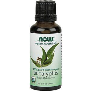eucalyptus eo 1.1